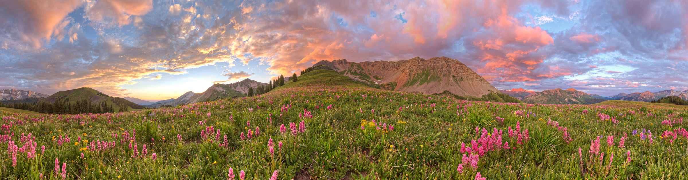 landscape image of a grassy field and beautiful hill | Life Coaching & Counseling | Judy O'Neill | Boulder, CO 80305